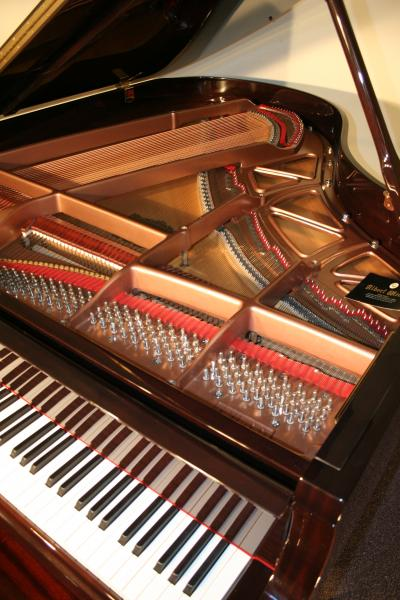 (SOLD) New 'Albert Weber' High End  Grand Piano 6'1' with similiar Steinway Hamburg Renner Action & Hammers
