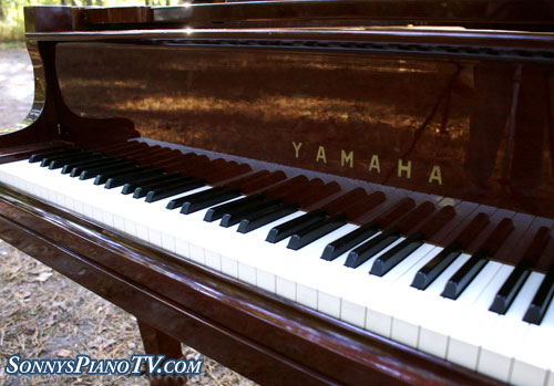 (SOLD Congrautualtions Meg & Baxter) Yamaha Grand Piano G3 6' Walnut Rebuilt Refinished in 1995!