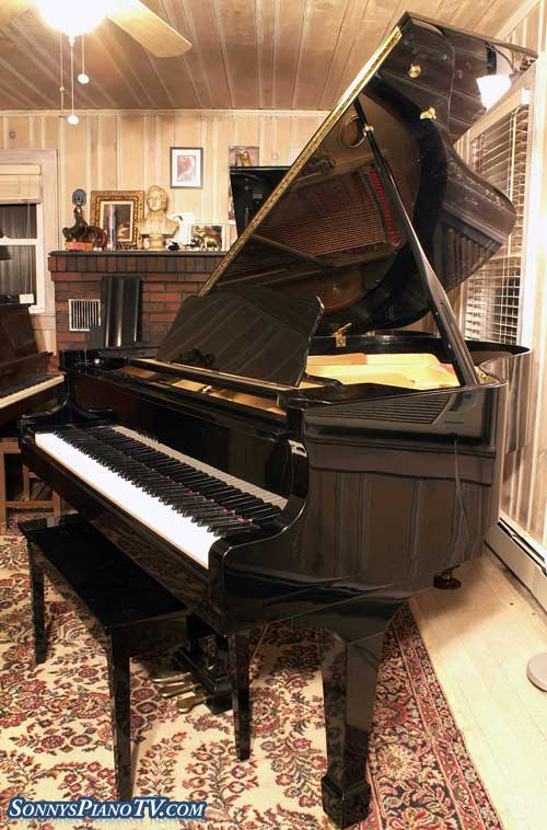 (SOLD) Ebony Gloss  Grand Piano Deluxe
