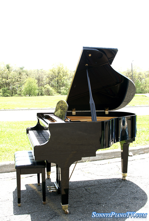 (SOLD Congratulations Nancy) Wurlitzer Baby Grand Ebony Gloss 5' 10 y/o