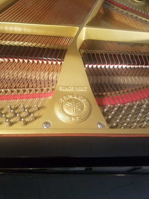 Yamaha Grand Piano G1 5'3
