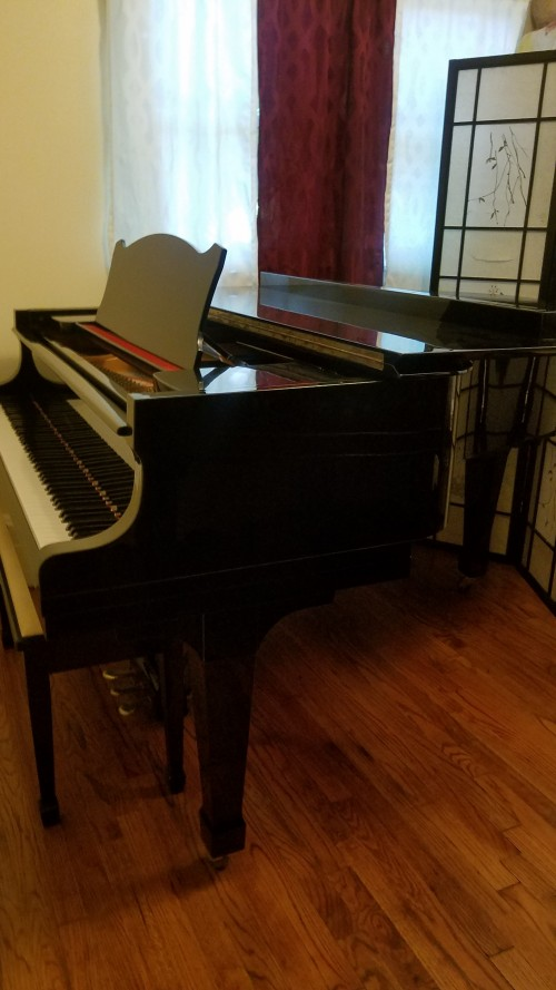 (SOLD)Tokai Ebony Gloss Grand Piano 5'11