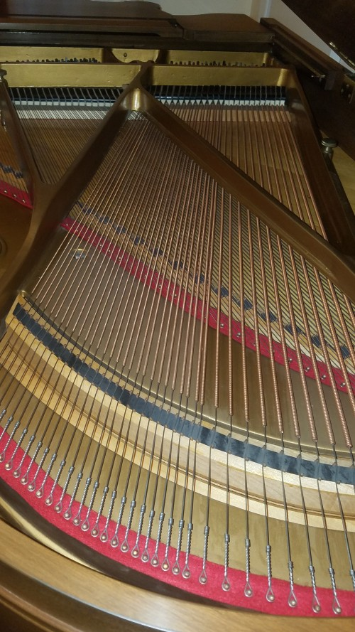 (SOLD)Sohmer Grand Piano, King Louis XV Art Case 5'7
