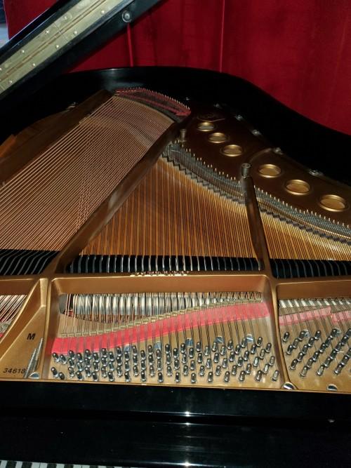 Steinway Grand Piano Ebony Model M 1954 Rebuilt/Refinished $17,500.