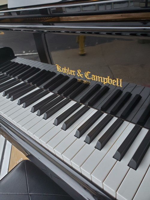 Kohler & Campbell Ebony Gloss LePetit  4'8