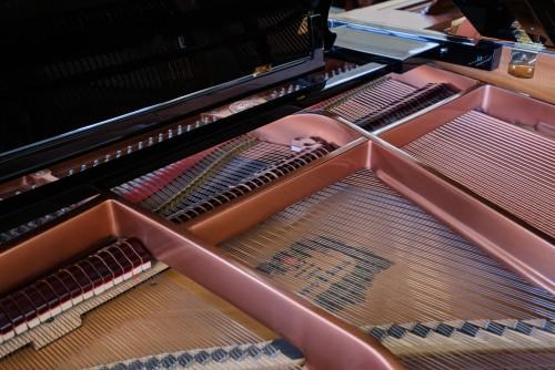 Pramberger-Young Chang Player Piano 2002 5'3