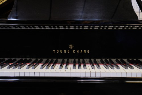 Young Chang Ebony Gloss Excellent 1989 4'11