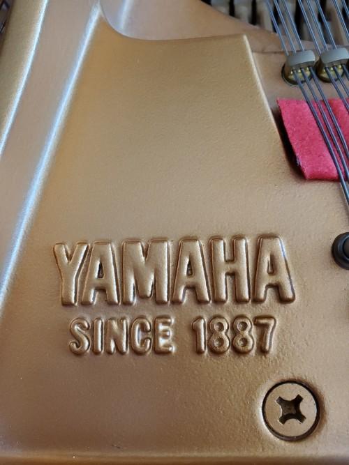 Yamaha Ebony Gloss Baby Grand 2001 GP1 5'3