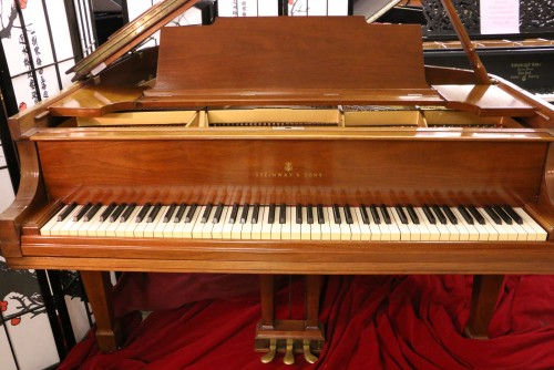 Steinway M  Grand Piano Walnut 5'7