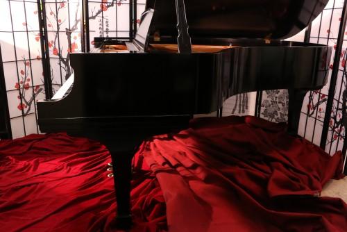 (SOLD) Steinway B Grand Piano 1982 (VIDEO). Recent  Rebuild & Refinish Semi-Gloss Ebony