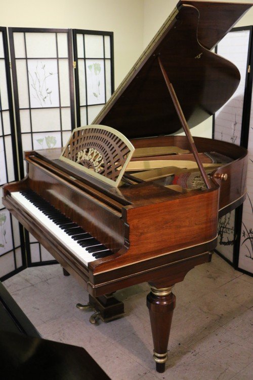 PLEYEL PIANO MADE IN PARIS HAND PAINTED ART CASE ROSEWOOD