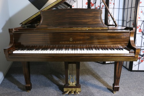 (SOLD Luxury Piano Art Case Steinway