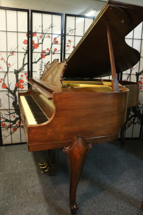 Art Case La Petite Baby Grand 4'6