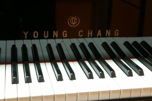 Ebony Gloss Young Chang 5'1