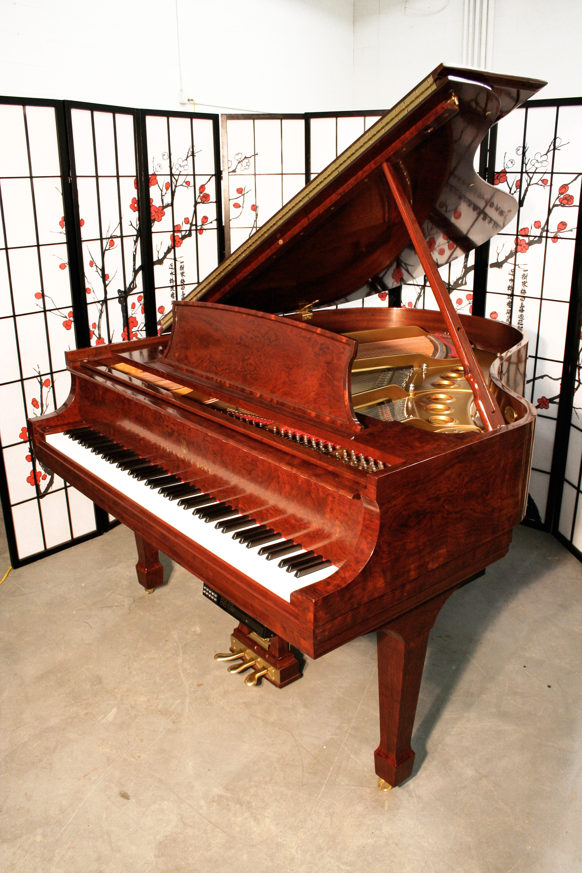 (SOLD) Steinway Grand Piano Model M 2001 From