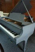 Lars Johnson Steinway Grey Slate PianoDisc IQ Sample