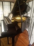 (VIDEO) Yamaha Grand Piano G1 5'3