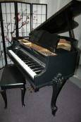 Art Case Ebony Gloss Sterling Baby Grand Piano $3950.