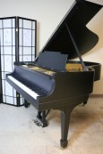 Steinway Model M Piano new Satin Ebony Black Finish 1923 Recently Rebuilt w/New Renner Action $17,500