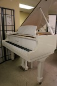 White Gloss/ivory Otto Altenburg Baby Grand 4'8