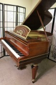 PLEYEL PIANO MADE IN PARIS $5900. (NEW VIDEO) Hand Painted Art Case Rosewood