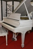 Customized Art Case Pianos  from Sonny's Design Your Own Piano