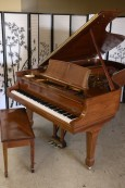 Art Case Steinway B Crown Jewel 1995
