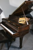 Luxury Piano Art Case Steinway