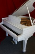 Customized  Art Case Steinway