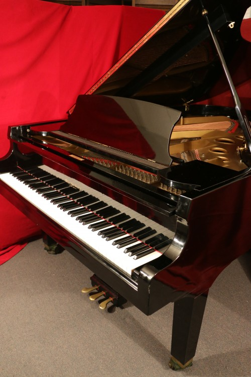 Sonnys piano tv piano photos sold concert grand otto for Big grand piano