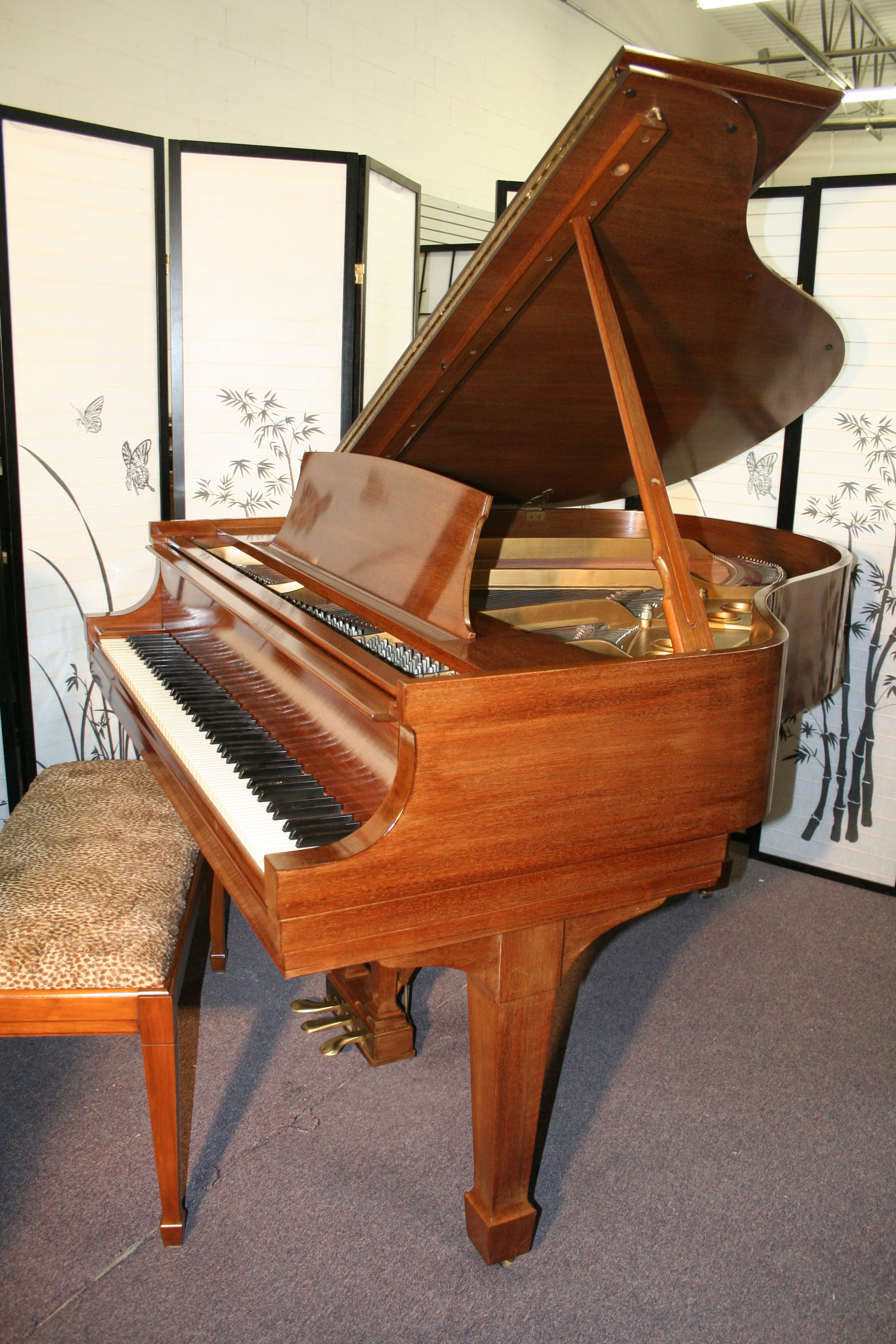 Young Cheng Baby Grand Texas Price